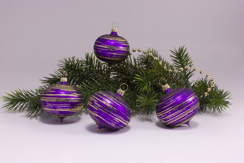 4 Zwiebeln Violett matt gold geringelt
