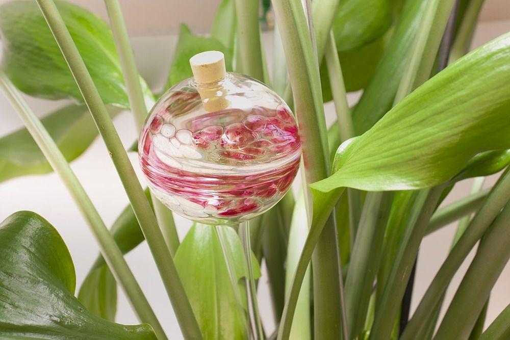 Bewässerungskugel Durstkugel rose weiß