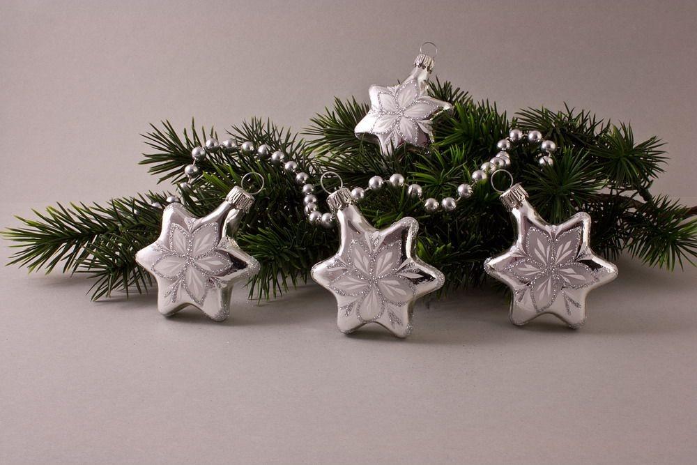 4 Sterne Silber Glanz mit Christrose