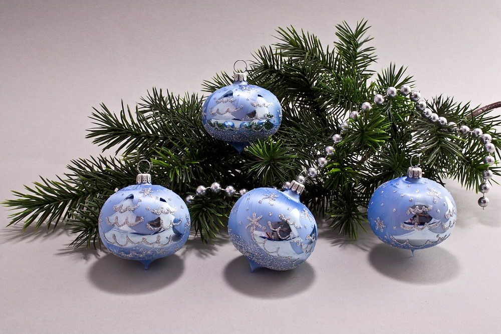 4 Zwiebeln Eis-hellblau silberne Tanne