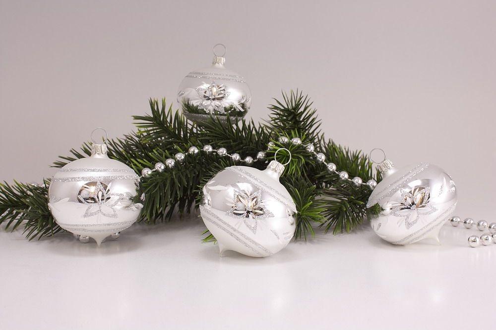 4 Zwiebeln Silber Glanz matt umrandet