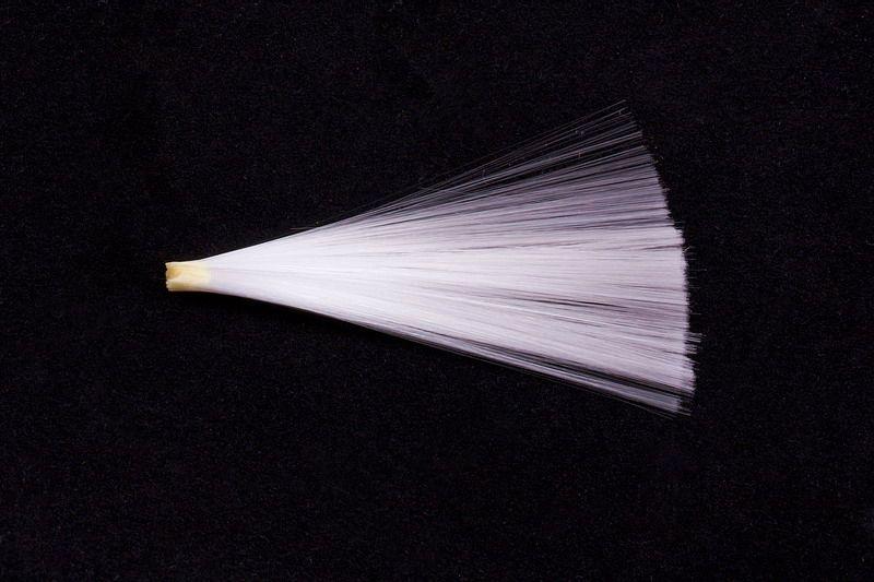 Original Ersatz Vogelschwänzchen aus Glasfaser