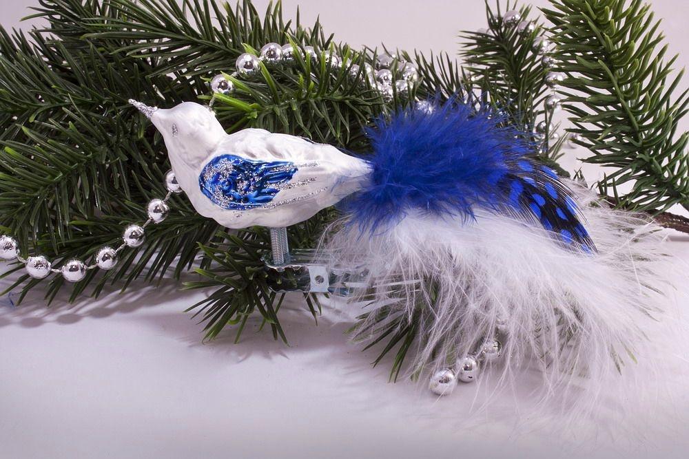 kleiner Vogel Eisweiß blau mit blauer Feder