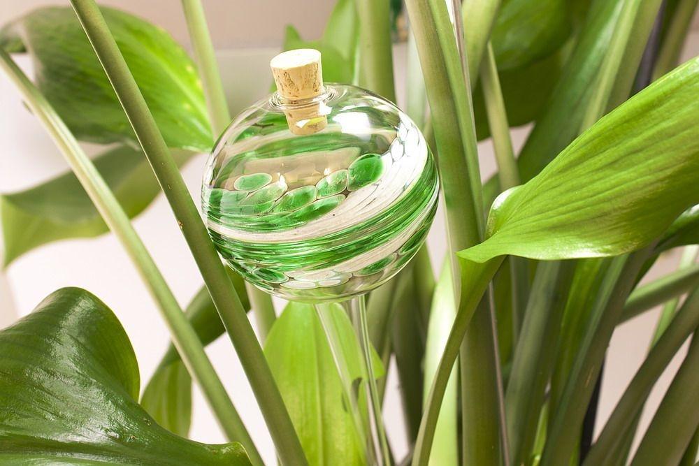 Bewässerungskugel Durstkugel grün weiß
