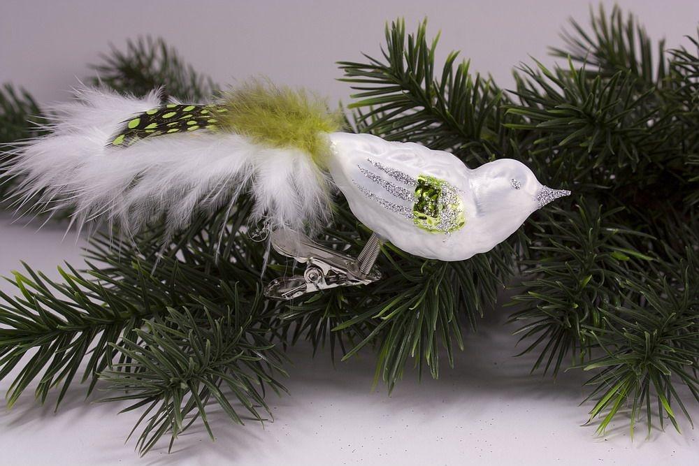 kleiner Vogel Eisweiß grün mit grüner Feder