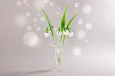 Sekt- & Bowlespieße aus Glas