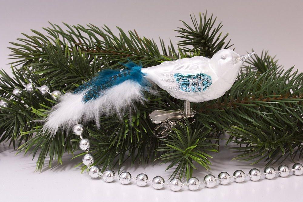 kleiner Vogel Eisweiß türkis mit türkis-farbener Feder