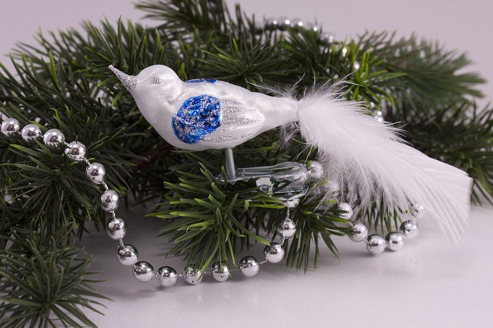 kleiner Vogel Eisweiß blau mit weißer Feder
